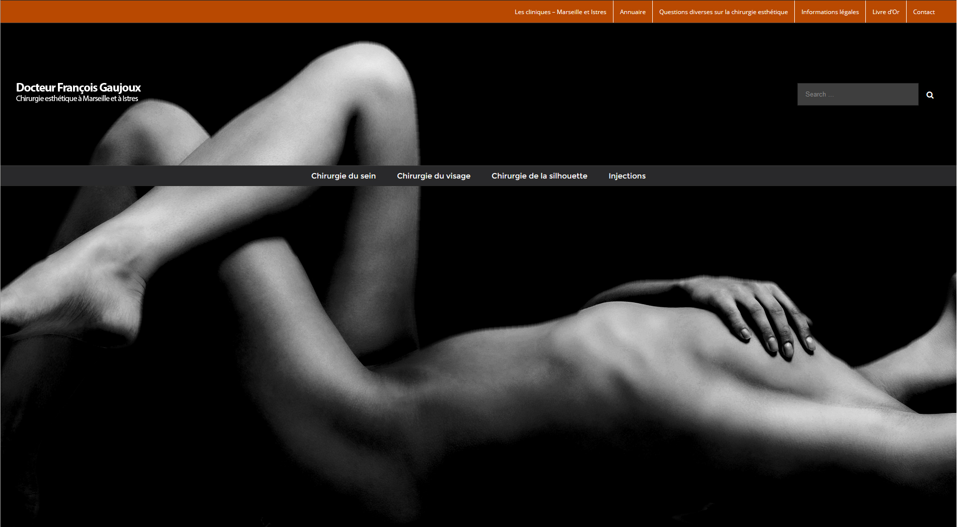 gaujoux-esthetique-creation-site-web-marseille